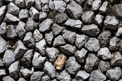 Kamienna ściana w szczególe jako tło Zdjęcie Royalty Free
