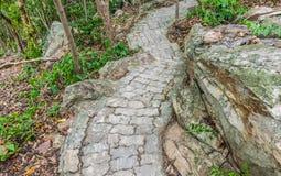 Kamienna ścieżka Obraz Stock