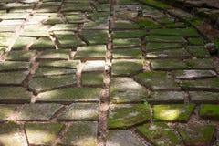 Kamienna ścieżka ogrodowa ścieżka kamienie przerastający z mech obraz royalty free