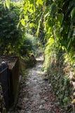 Kamienna ścieżka w górach zdjęcie stock