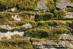 kamienna ściana stara Zdjęcia Stock