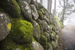 kamienna ściana w mech Obrazy Royalty Free