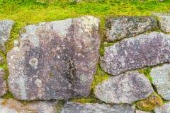 Kamienna ściana z zielonym mech obrazy stock