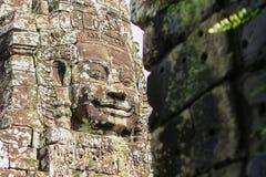 Kamienna cyzelowanie twarz Obrazy Stock