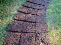 Kamienna droga przemian na trawie Zdjęcie Stock