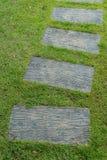 Kamienna droga przemian na zielonej trawie Obraz Stock