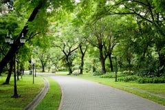 Kamienna droga przemian w parku Zdjęcia Royalty Free