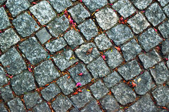 Kamienna drogowa tło tekstura Fotografia Stock