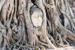 Kamienna głowa Buddha w Wata Prha Mahathat świątyni Zdjęcia Stock