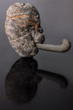 Kamienna głowa, kamień, Obrazy Royalty Free