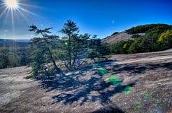 Kamienna halna północna Carolina sceneria podczas jesień sezonu Zdjęcie Royalty Free