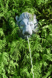 Kamienna lew głowa z fontanną w zielonych roślinach Zdjęcie Royalty Free
