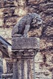 Kamienna lew statua blisko Sibenik katedry obrazy stock