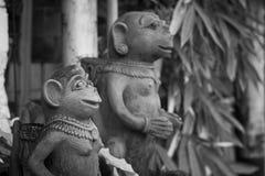 Kamienna małpia statua z czarny i biały stylem Fotografia Royalty Free