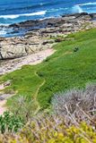 Kamienna plaża z skałami Fotografia Royalty Free