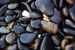 Kamienna plaża Obraz Stock