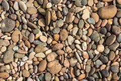 Kamienna podłoga Zdjęcie Stock