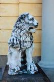 Kamienna postać lew Obrazy Stock