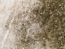 Kamienna powierzchnia Zdjęcie Royalty Free