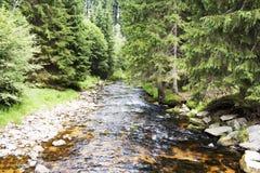 Kamienna rzeka Zdjęcia Royalty Free