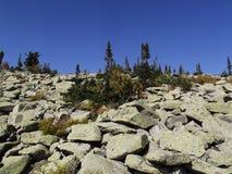 Kamienna rzeka Obraz Stock