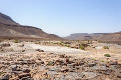 Kamienna rzeka bez wody, Draa dolina (Maroko) Zdjęcia Royalty Free
