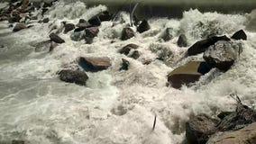 Kamienna siklawa w małej rzece, silny wodny strumień zdjęcie wideo