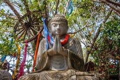Kamienna statua Siedzieć Buddha pod drzewem, Bali, Indonezja obraz royalty free
