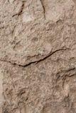 Kamienna szorstka brąz ściany tekstura obrazy stock