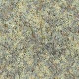 Kamienna talerz powierzchnia - bezszwowy naturalny szorstki wzór Fotografia Stock