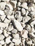 Kamienna tekstura lub skały tekstura w naturalnym miejscu Obraz Royalty Free
