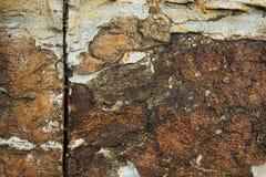 Kamienna tekstura na tle Szczegółowa kolorowa kamienna tekstura Zdjęcie Royalty Free