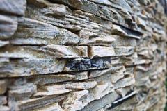 Kamienna tekstury skała Fotografia Royalty Free