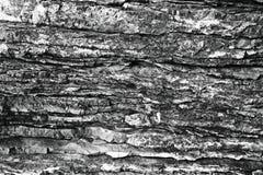 Kamienna tekstury skała Obraz Royalty Free