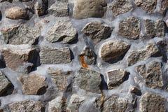Kamiennej ściany tekstura Zdjęcia Stock