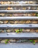 Kamienni kroki 4 Obrazy Royalty Free