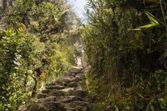 Kamienni kroki Mach Picchu Zdjęcie Royalty Free