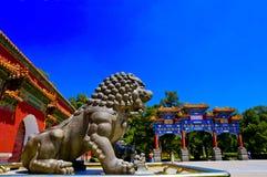 Kamienni lwy chroni bramę Obraz Stock