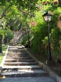 Kamienni schodki w Śródziemnomorskim ogródzie Obrazy Stock