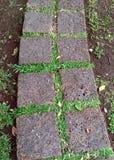 Kamienni sposobów bloki w parku Zdjęcia Stock