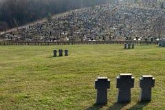 Kamienni Teutońscy krzyże na Niemieckim militarnym cmentarzu w Kharkov, Ukraina obraz stock