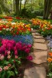 Kamienny ścieżki cewienie w ogródzie Zdjęcie Stock