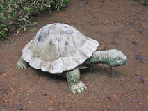 Kamienny żółw w ogródzie Zdjęcia Stock
