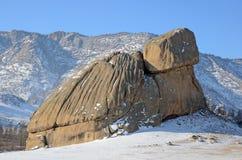 Kamienny żółw w Terelj parku, Mongolia Obrazy Royalty Free