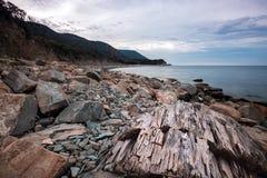 Kamienny denny wybrzeże w ranku Obraz Royalty Free