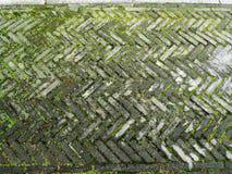 Kamienny droga przemian wzór z zieloną trawą Zdjęcie Stock