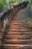 Kamienny kroka ślad w drewnach Fotografia Royalty Free