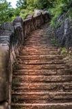 Kamienny kroka ślad w drewnach Zdjęcia Royalty Free