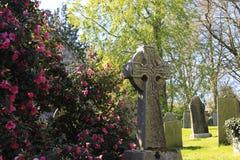 Kamienny krzyż Cornwall i kwiaty Zdjęcia Stock