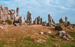 Kamienny las w Kunming Obraz Royalty Free